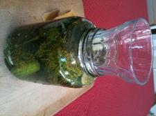 pickles42.jpg