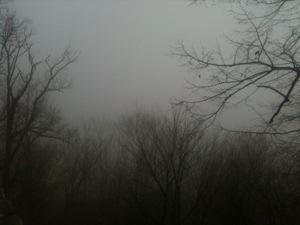20121123-154324.jpg